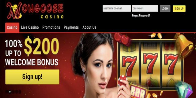 Mongoose online casino bonus