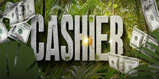 WildCasino cashier